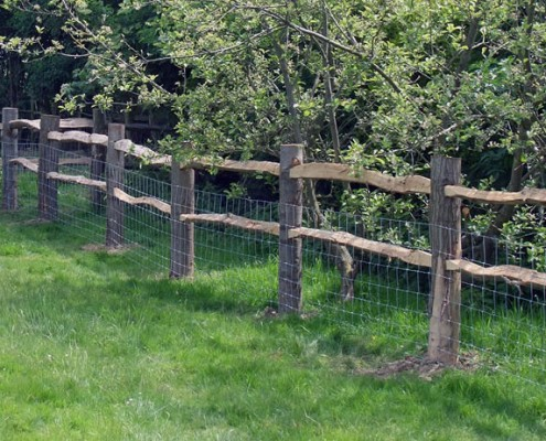 2 rail chestnut post and rail with stock fencing